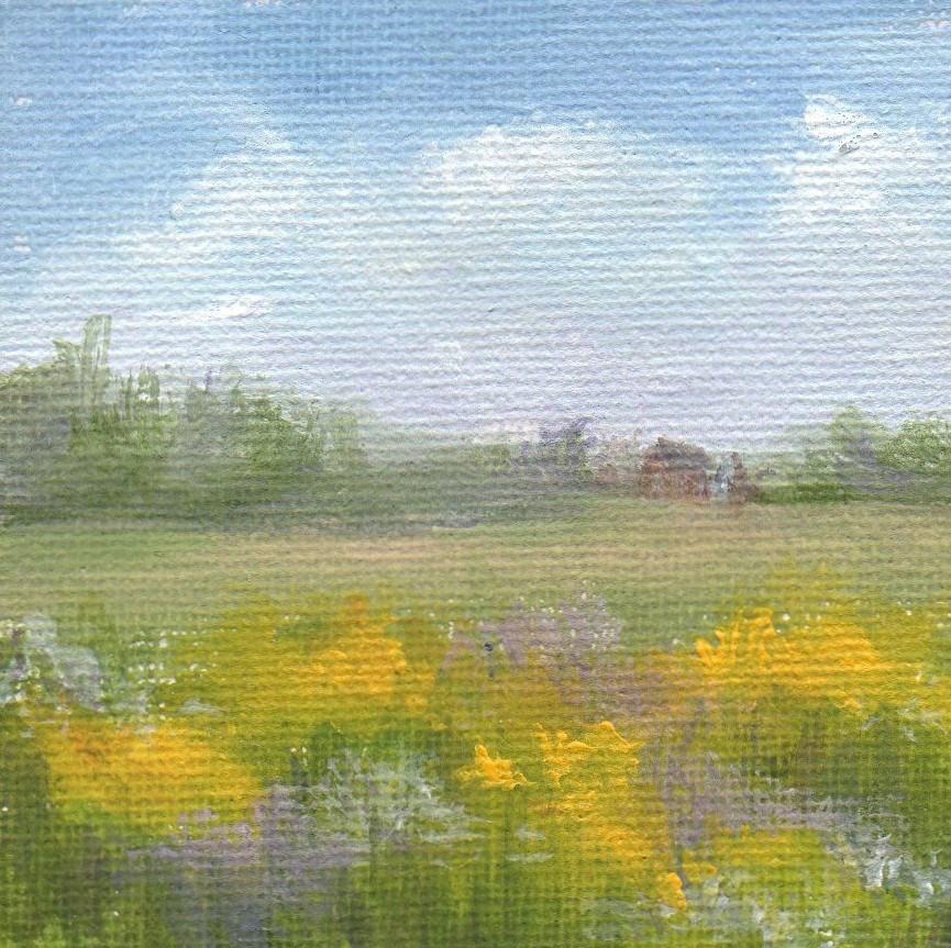 """Maine Meadow"" original fine art by Debbie Shirley"
