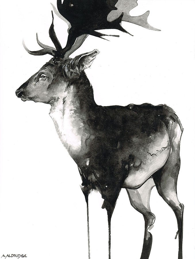 """Stag"" original fine art by April Aldridge"