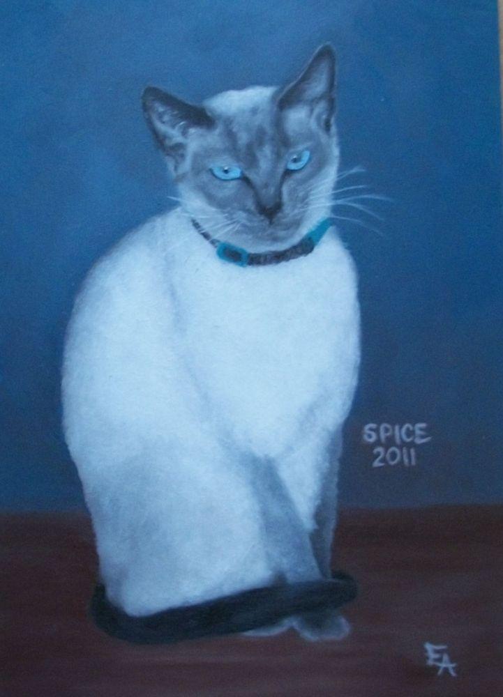 """Spice"" original fine art by Elizabeth Elgin"