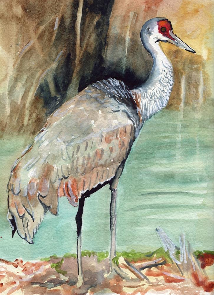 """Sand Hill Crane "" original fine art by Bunny Griffeth"