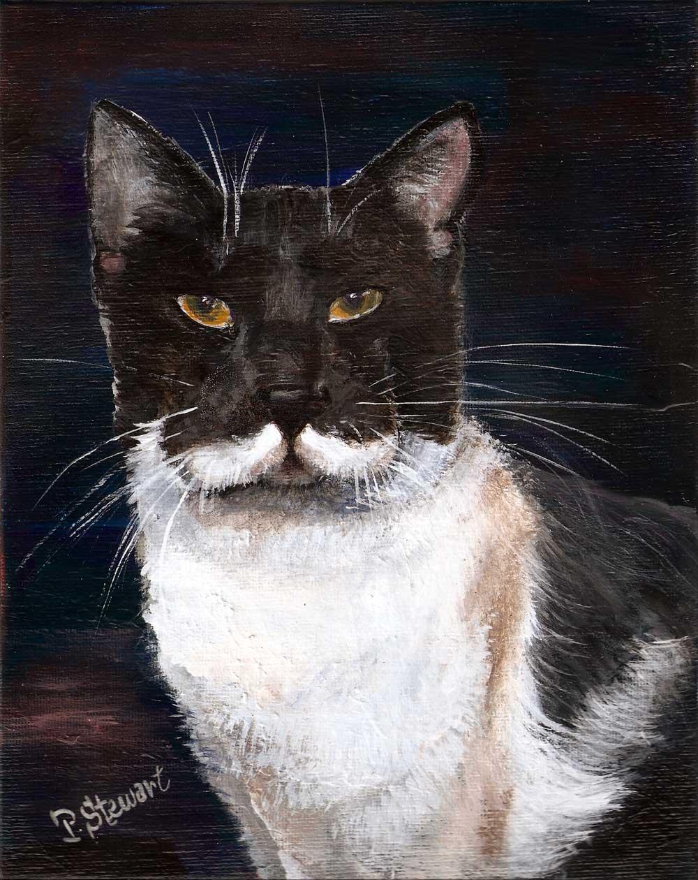 """Black and White Cat Pet Portrait"" original fine art by Penny Lee StewArt"