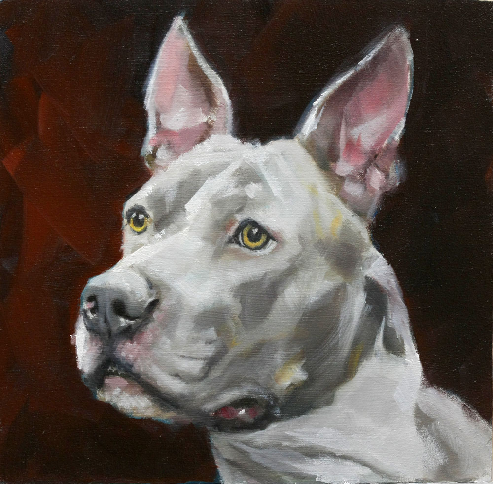 """Bully"" original fine art by Clair Hartmann"
