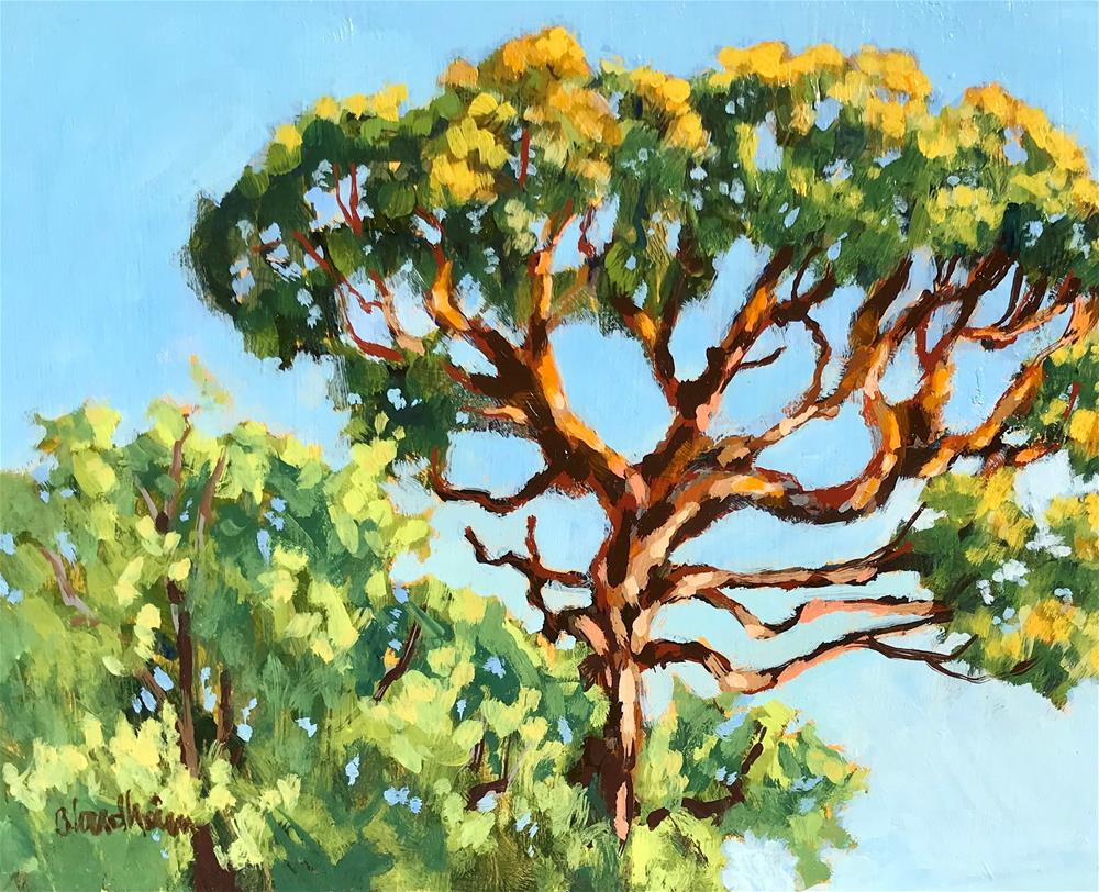"""Pine Canopy"" original fine art by Linda Blondheim"