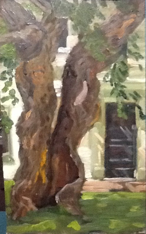 """""""Ancient White Mulberry"""" original fine art by Elizabeth Bish"""