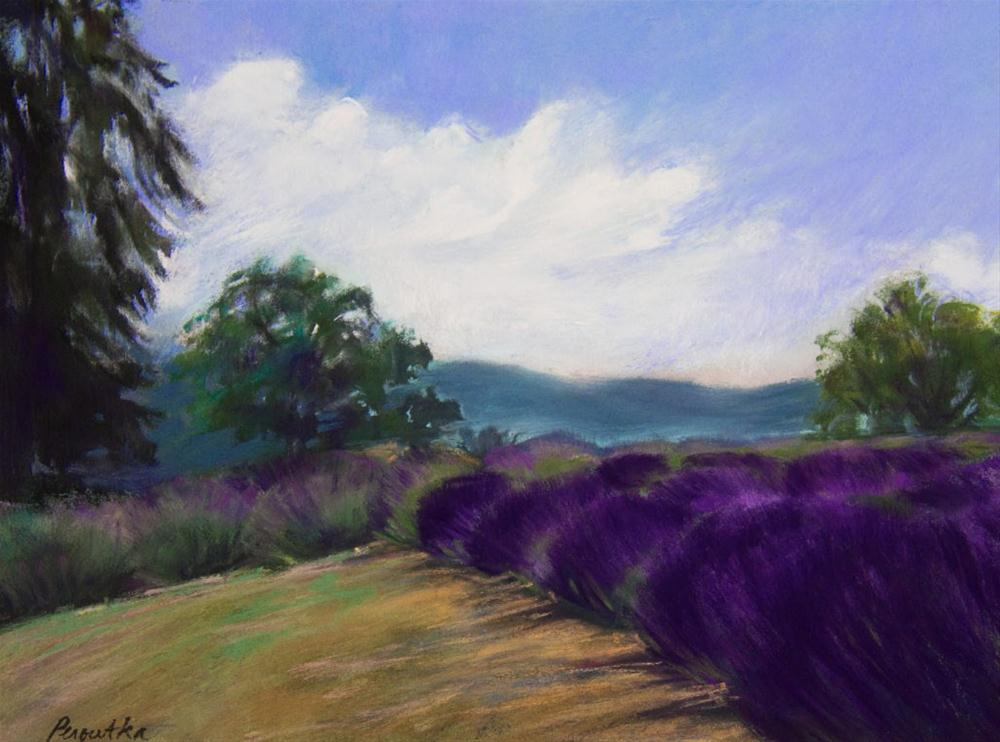 """Mountainside Lavender"" original fine art by Sarah Peroutka"