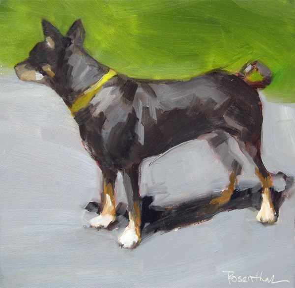 """Sable"" original fine art by Robin Rosenthal"