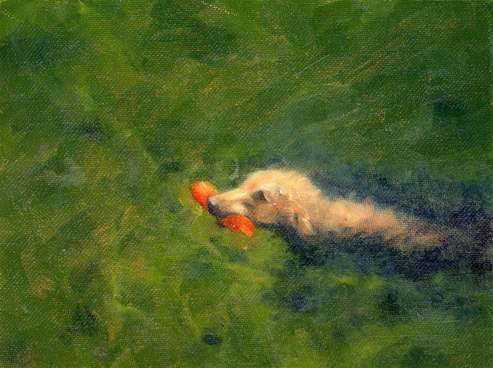 """""""Buster"""" original fine art by Susanne Billings"""