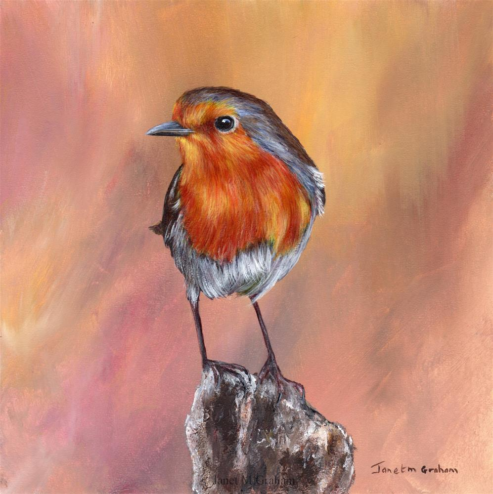 """Robin No 14"" original fine art by Janet Graham"