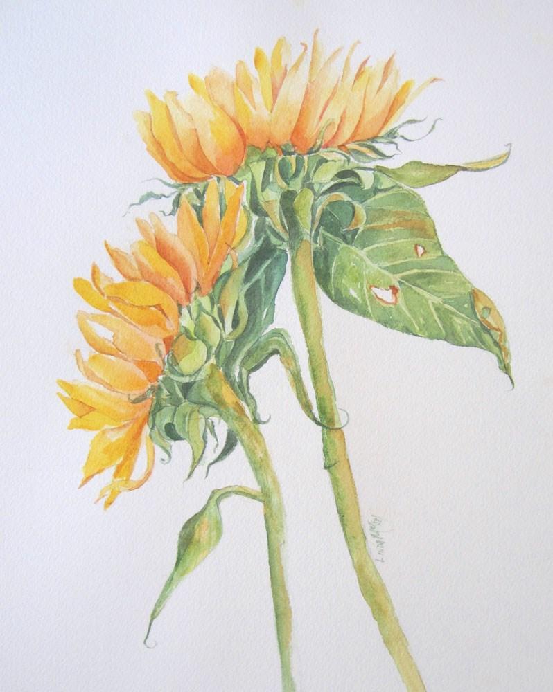 """The Flip Side Watercolor by Linda McCoy"" original fine art by Linda McCoy"
