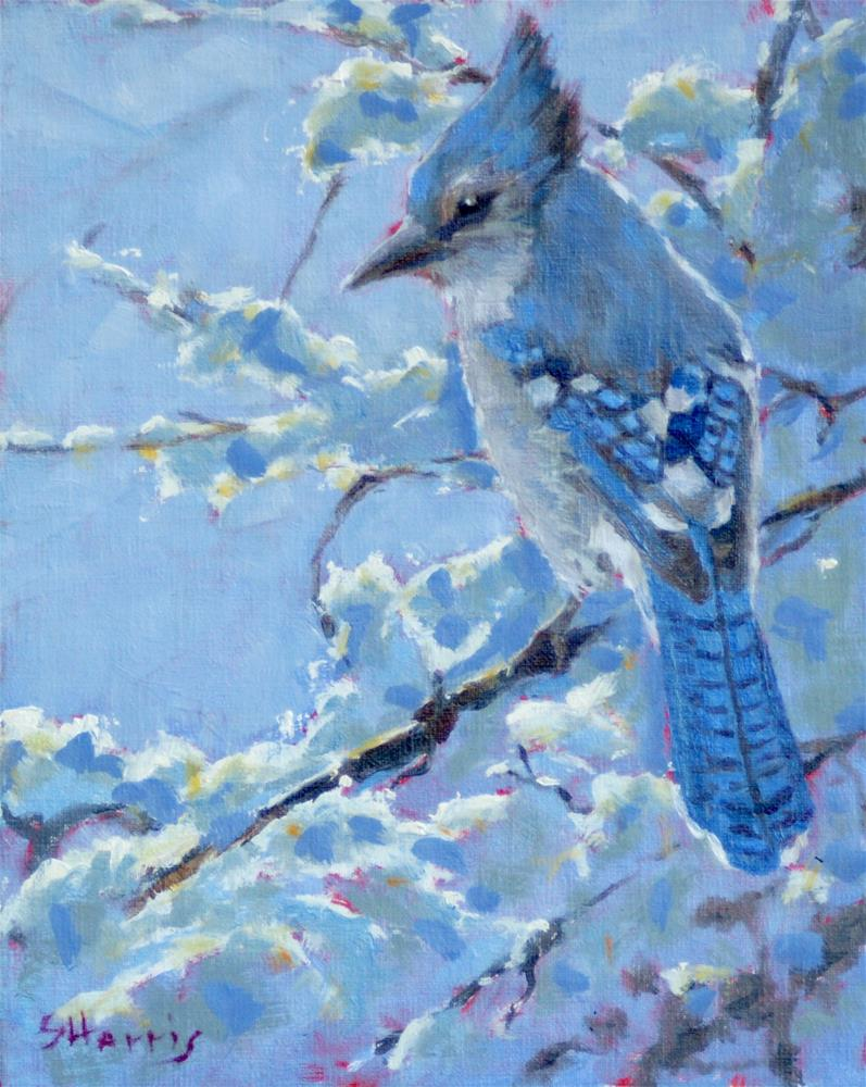 """Blue Frost"" original fine art by Sandra L Harris"