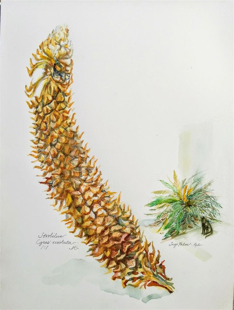 """Sago Palm - Cycas revoluta"" original fine art by Jean Krueger"
