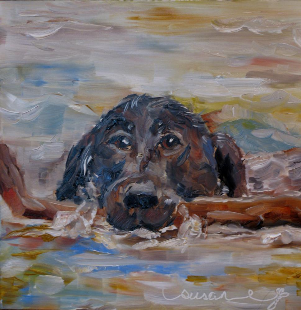 """Fetch"" original fine art by Susan Elizabeth Jones"