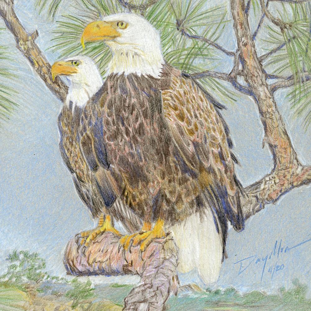 """Majestical Vision"" original fine art by Mike Daymon"