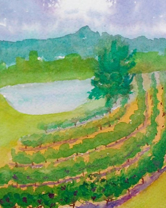 """Verdant Vineyard"" original fine art by Maria Peagler"