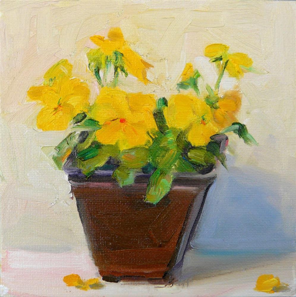 """Little Yellow Pansies,still life,oil on canvas,6x6,price$200"" original fine art by Joy Olney"