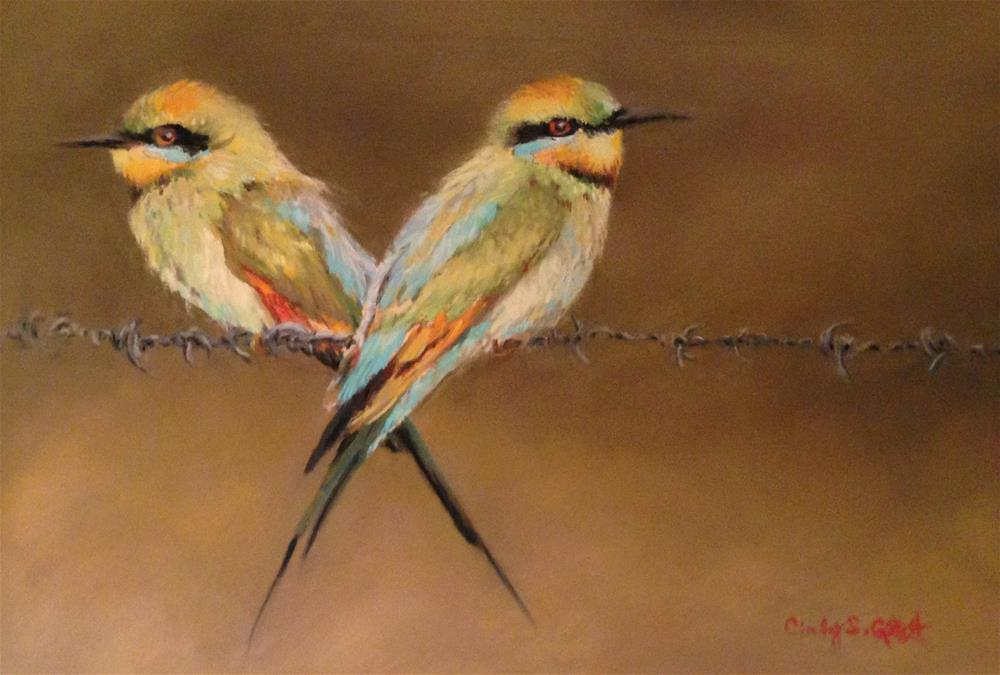 """Rainbow Bee-Eaters"" original fine art by Cindy Gillett"