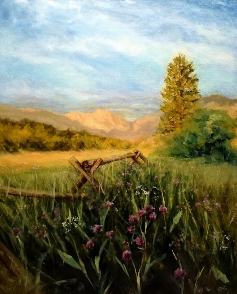 """Rocky Mountain National Park"" original fine art by Dalan Wells"