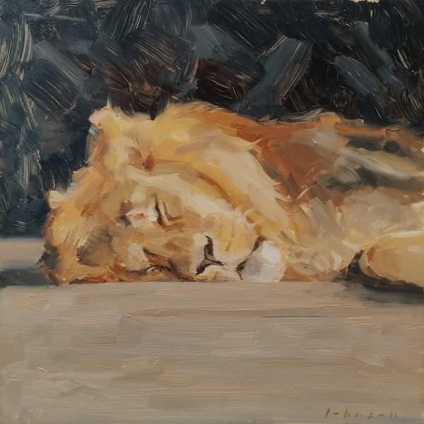 """Cat Nap"" original fine art by Dan Johnson"