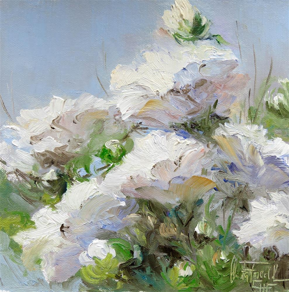 """Blue and White"" original fine art by Christa Friedl"