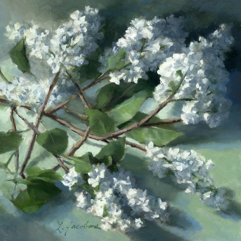 """Lilacs Dressed in White"" original fine art by Linda Jacobus"