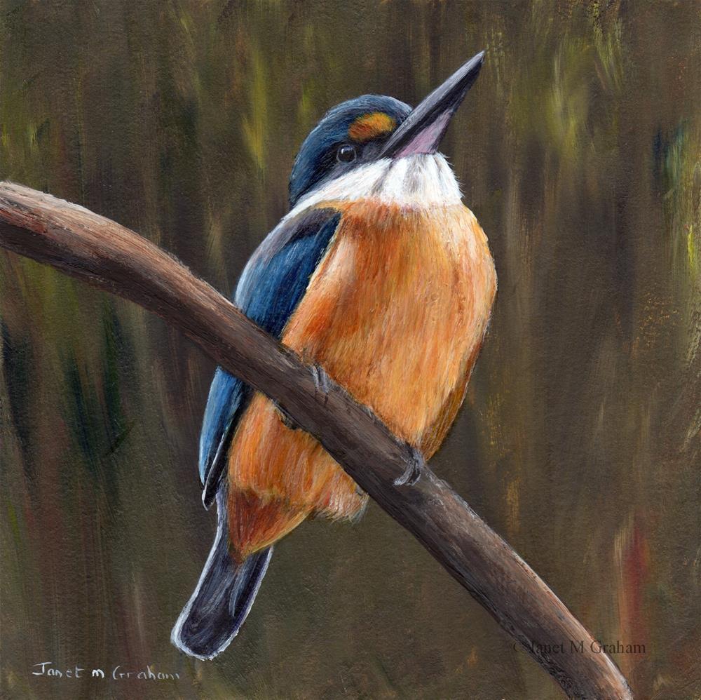 """Sacred Kingfisher"" original fine art by Janet Graham"