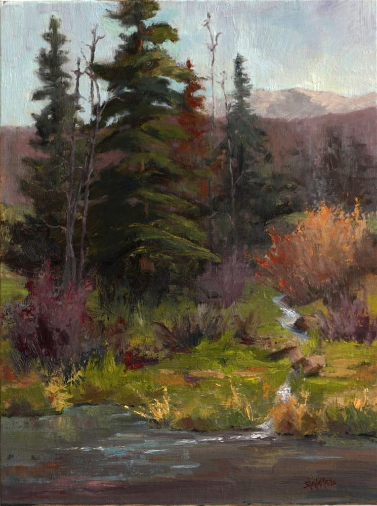 """June Morning on Byers Trail"" original fine art by Sheila Marie"