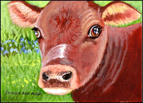 """Young Cow"" original fine art by Patricia Ann Rizzo"