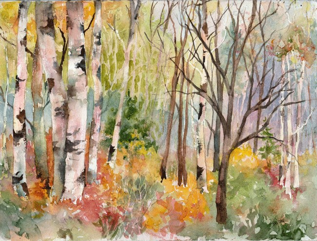 """""""Fall Woodland with Birches"""" original fine art by Sue Dion"""