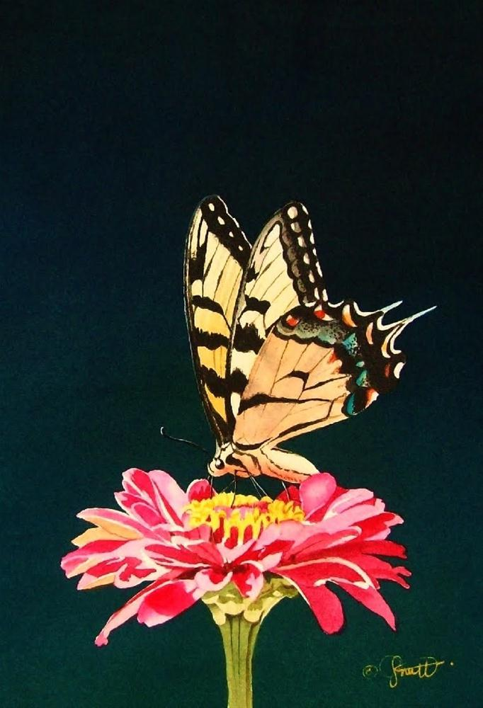 """Butterfly & Friend"" original fine art by Jacqueline Gnott, TWSA, WHS"