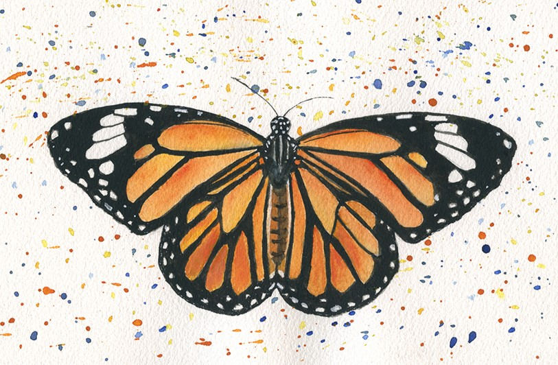 """Monarch Butterfly"" original fine art by Ria Hills"