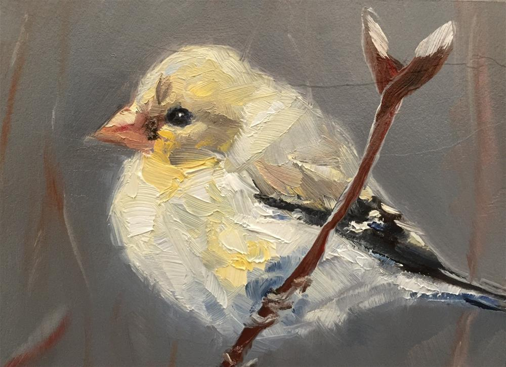 """Goldfinch, Winter Plumage"" original fine art by Gary Bruton"