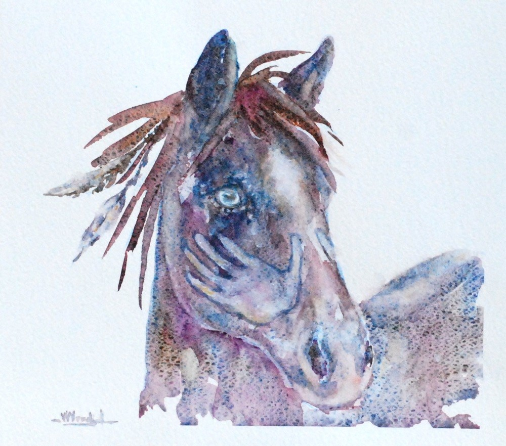 """war pony"" original fine art by Vicki Wood"