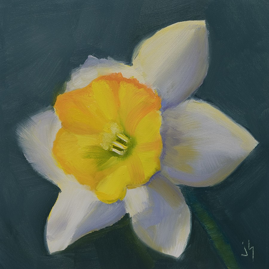 """Las Vegas Daffodil"" original fine art by Johnna Schelling"
