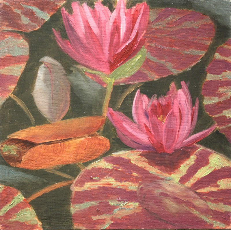 """Variegated Lily Pads"" original fine art by Jane Frederick"