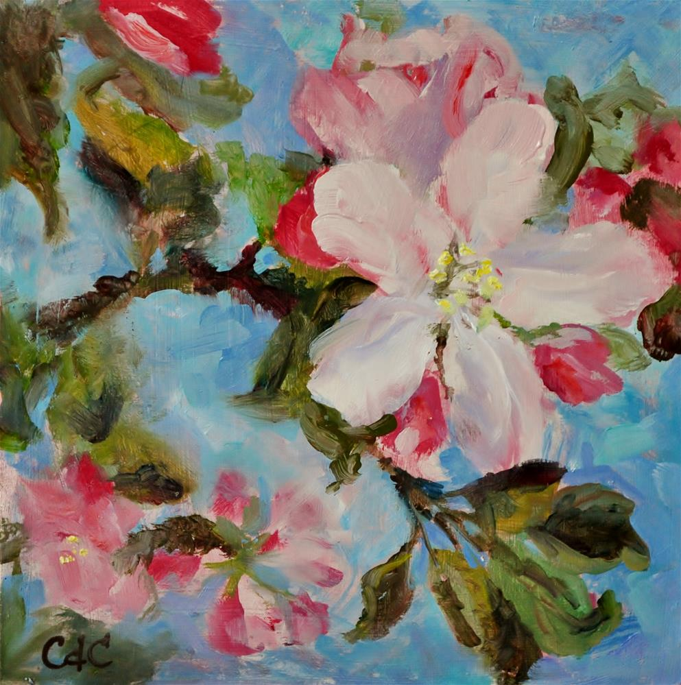 """Apple Blossoms"" original fine art by Catherine Crookston"