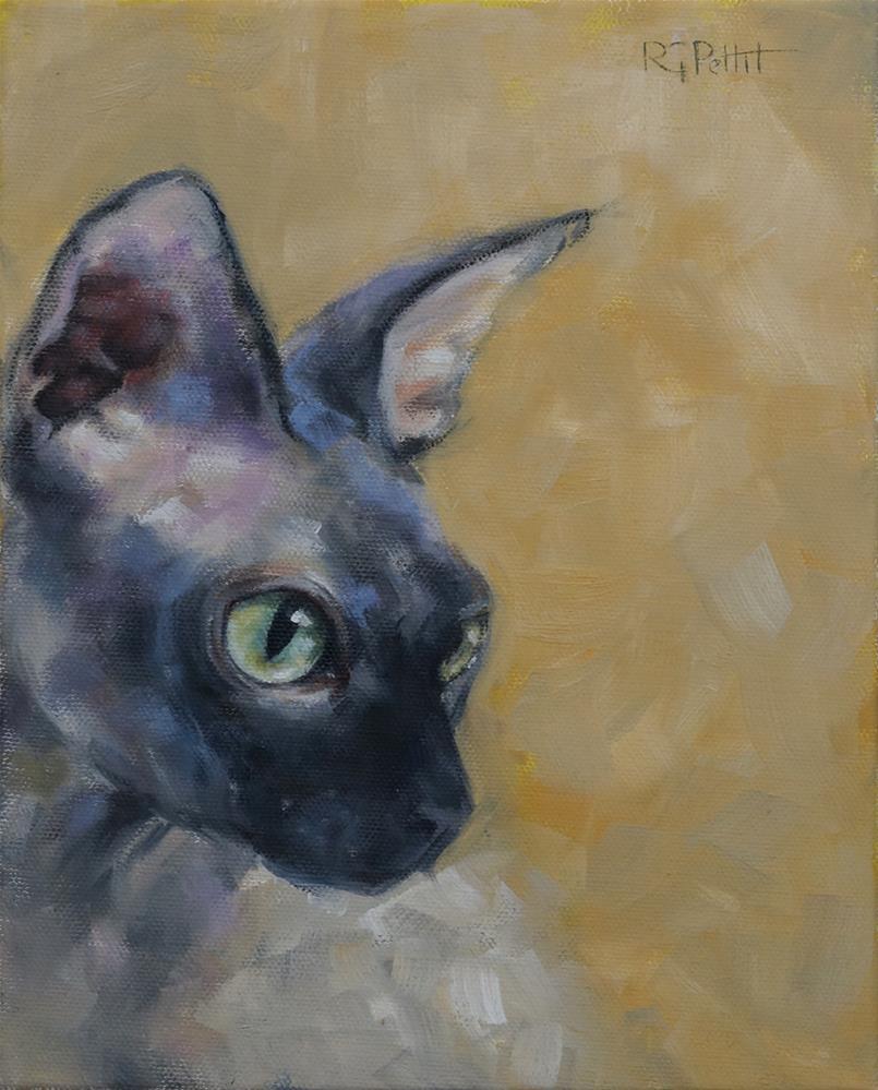 """Cat Study in Gray and Gold"" original fine art by Rhea  Groepper Pettit"