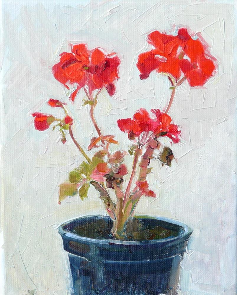 """New Geraniums,still life,oil on linen,10x8,price$350"" original fine art by Joy Olney"