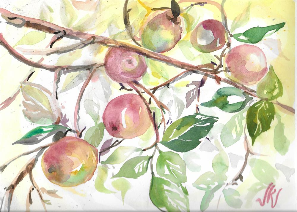 """Wild Apples"" original fine art by Jean Krueger"