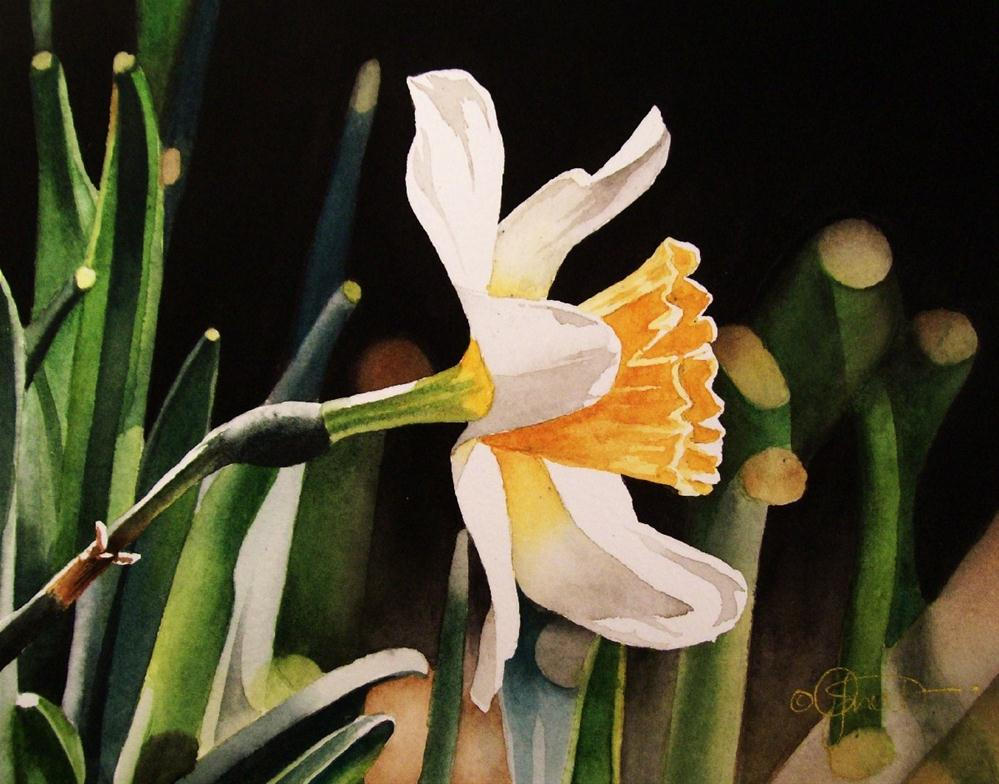"""Spring Flower Week Day 1: Daffodil"" original fine art by Jacqueline Gnott, TWSA, WHS"