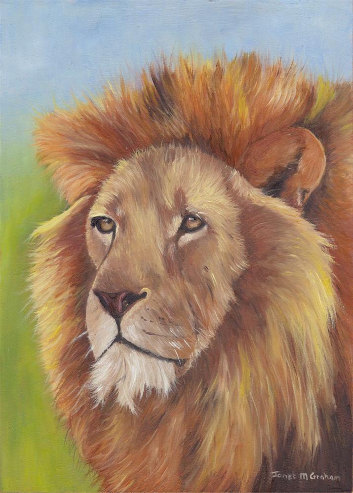 """Lion"" original fine art by Janet Graham"