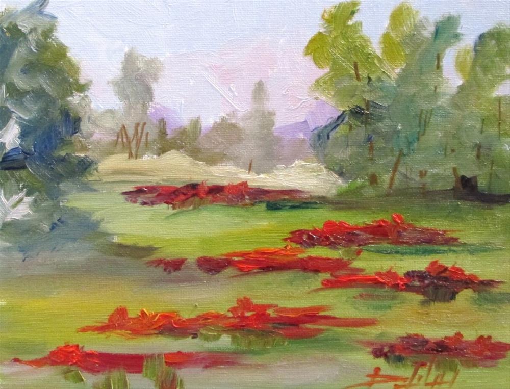 """Poppy Field No. 4"" original fine art by Delilah Smith"