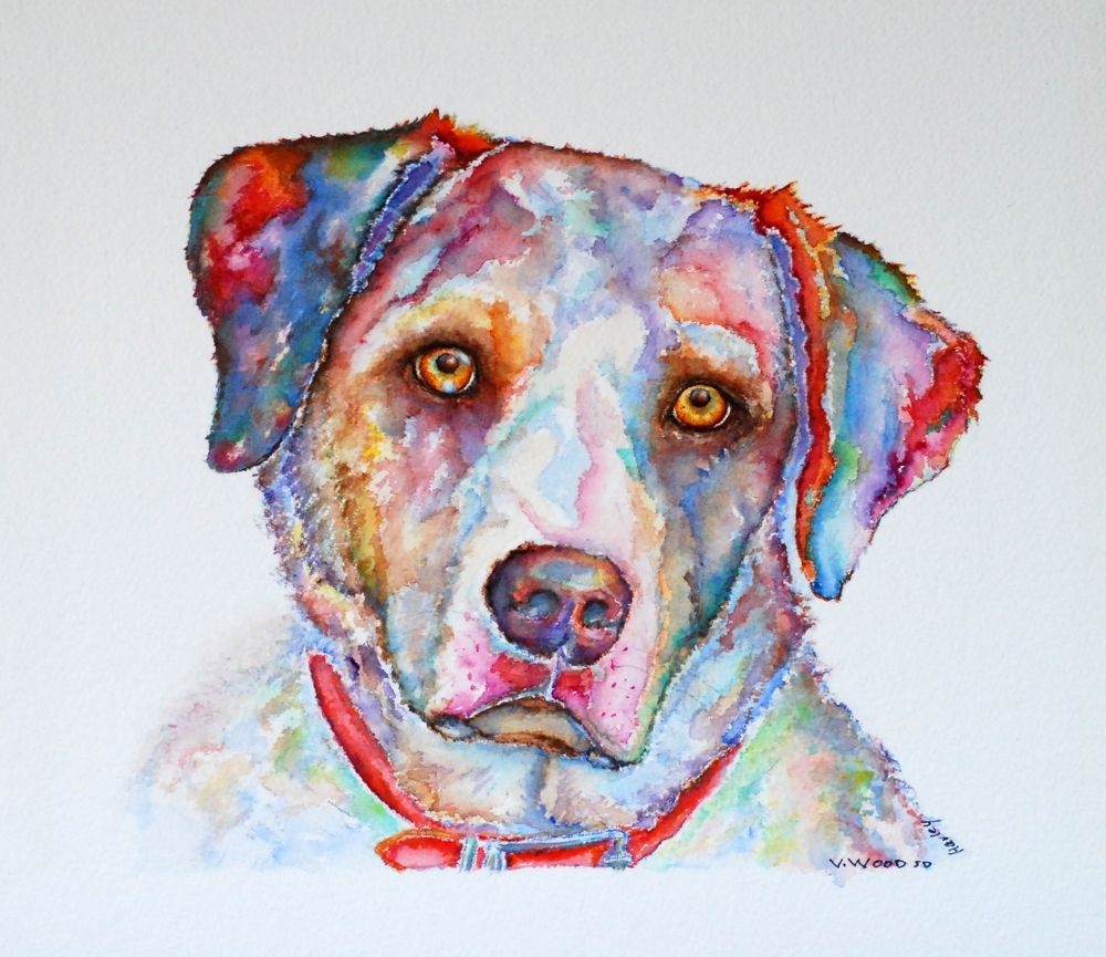 """Harley"" original fine art by Vicki Wood"