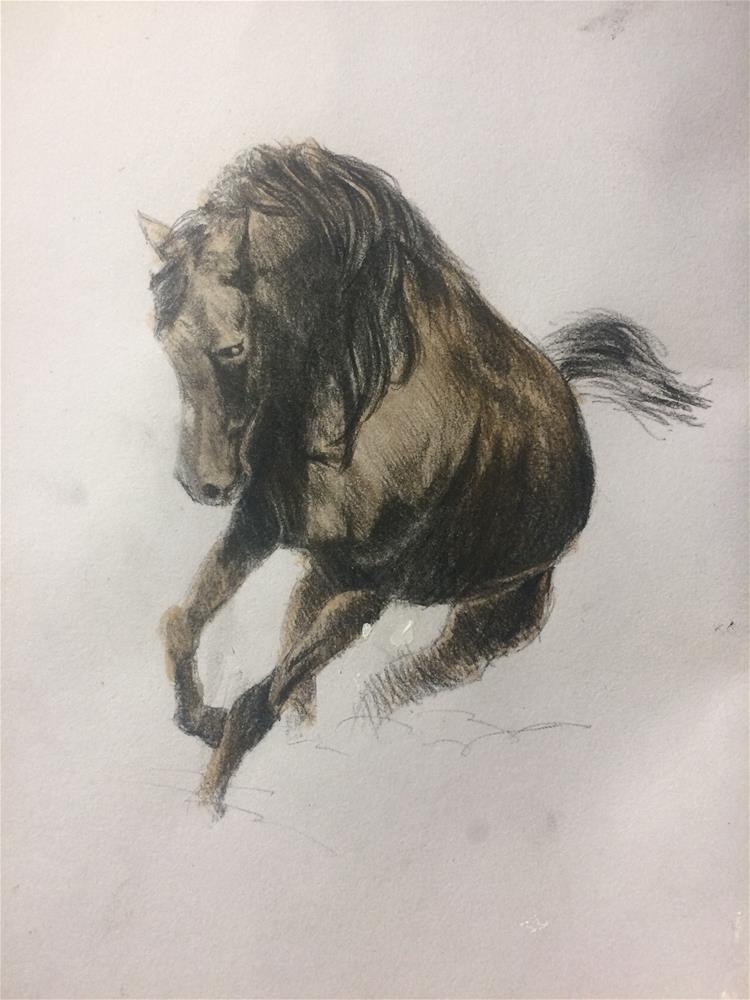 """""""Horse sketch"""" original fine art by Paulo Jimenez"""