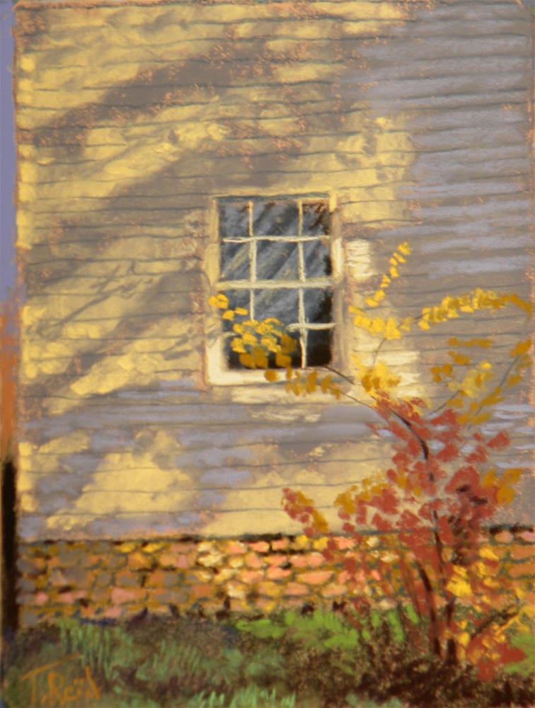 """""""Window in the shadow"""" original fine art by Toby Reid"""