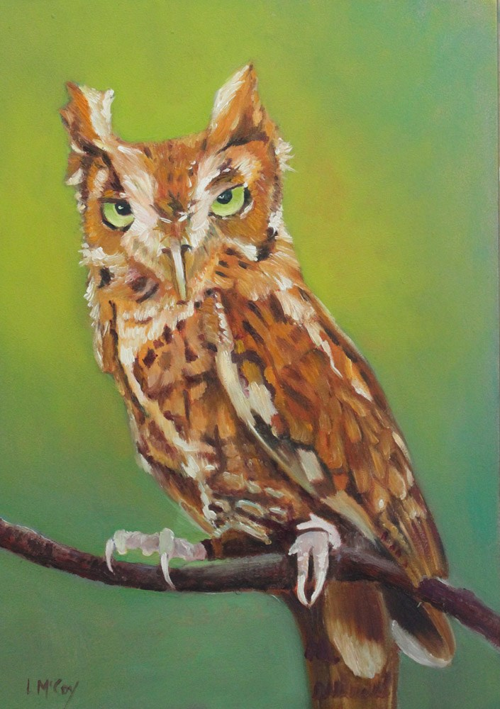 """Owl, Oil Painting by Linda McCoy"" original fine art by Linda McCoy"
