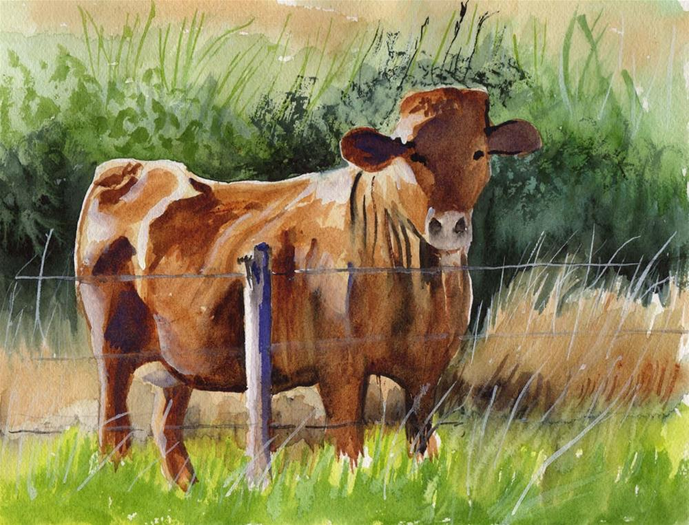 """""""How Now Brown Cow"""" original fine art by Bunny Griffeth"""