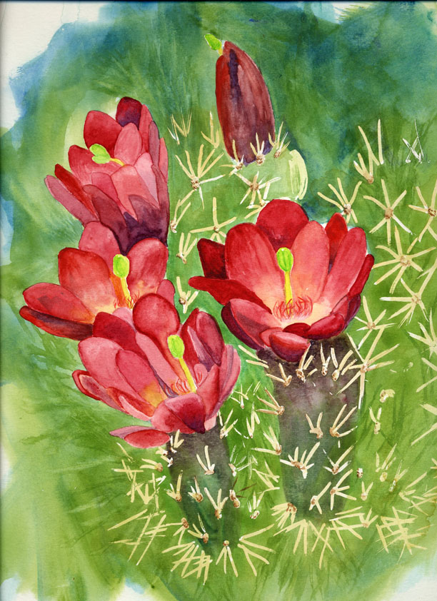 """""""Red Cacti Flowers"""" original fine art by Michelle Wolfe"""