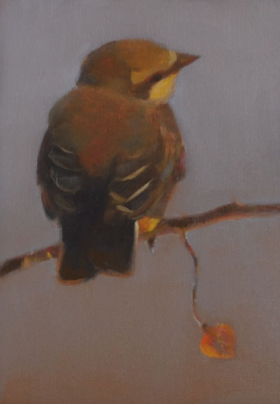 """Baby Kingbird 2 (framed)"" original fine art by Pamela Poll"