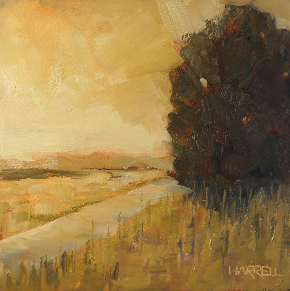 """""""Willamette Valley Summer"""" original fine art by Sue Harrell"""