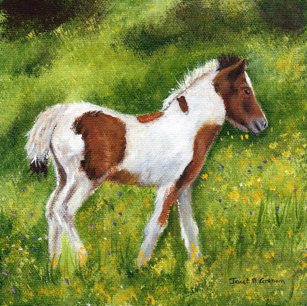 """Foal"" original fine art by Janet Graham"